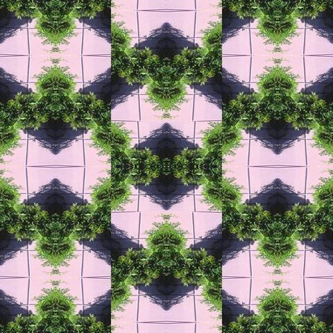 Garden Tile Mosaic