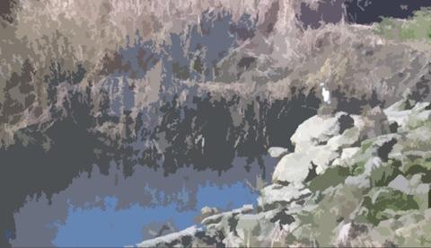 trail - egret CUTOUT