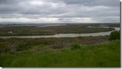 marsh view slough