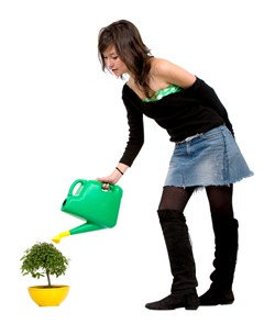 girl watering a tree