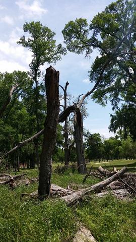 texas parks spooky 01